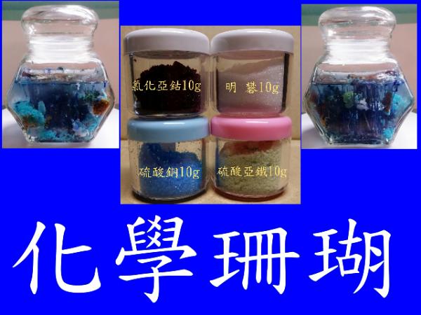 化學珊瑚材料包-diy世界